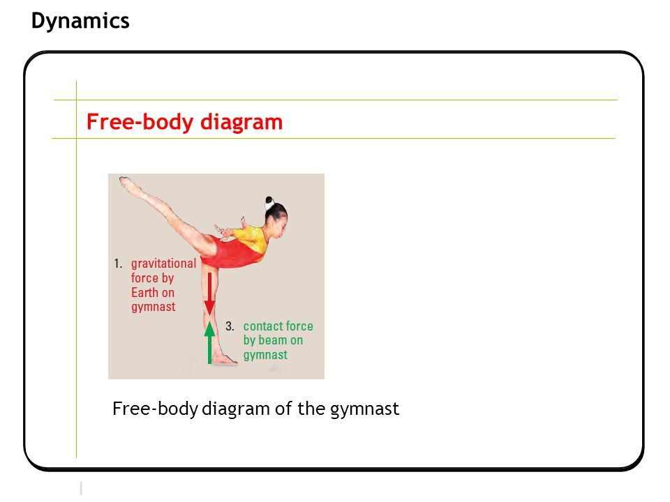 Free-body diagram Free-body diagram of the gymnast