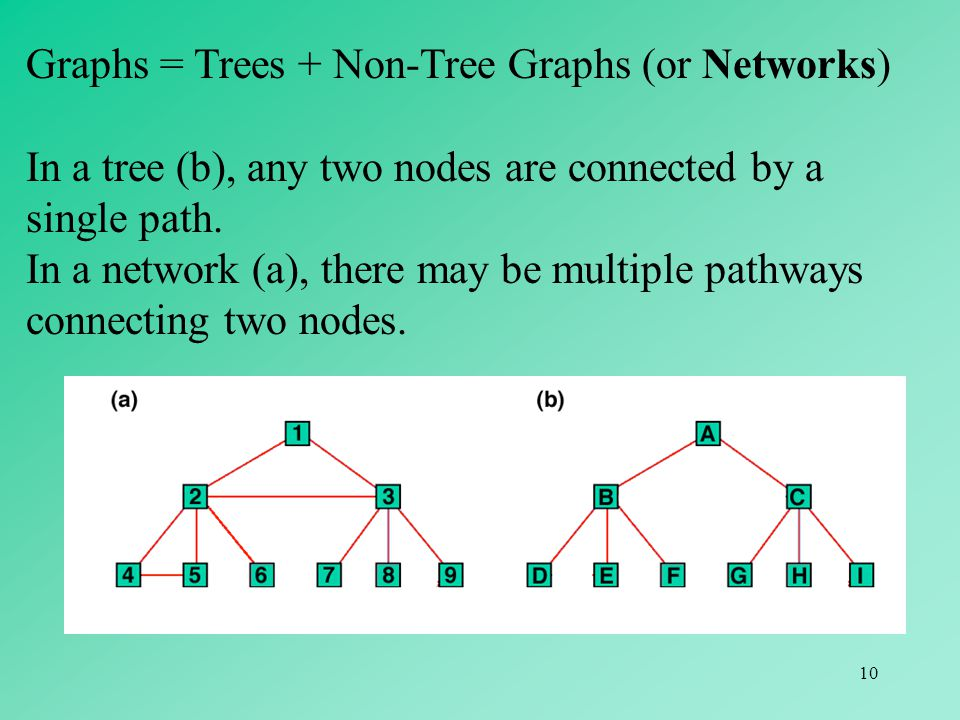 Graphs = Trees + Non-Tree Graphs (or Networks)