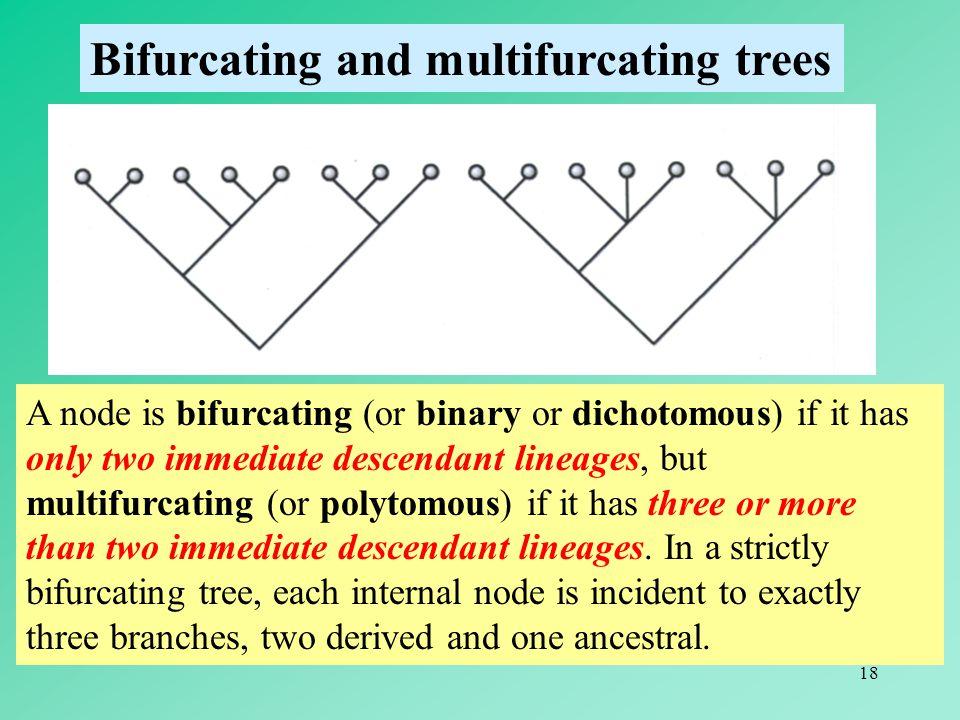 Bifurcating and multifurcating trees