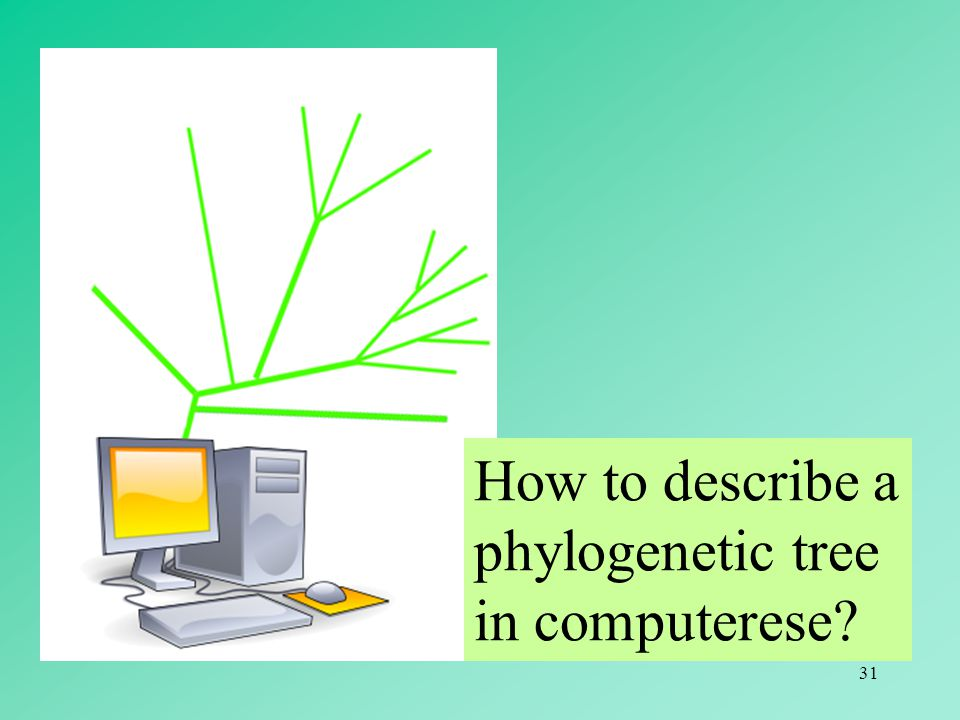 How to describe a phylogenetic tree in computerese