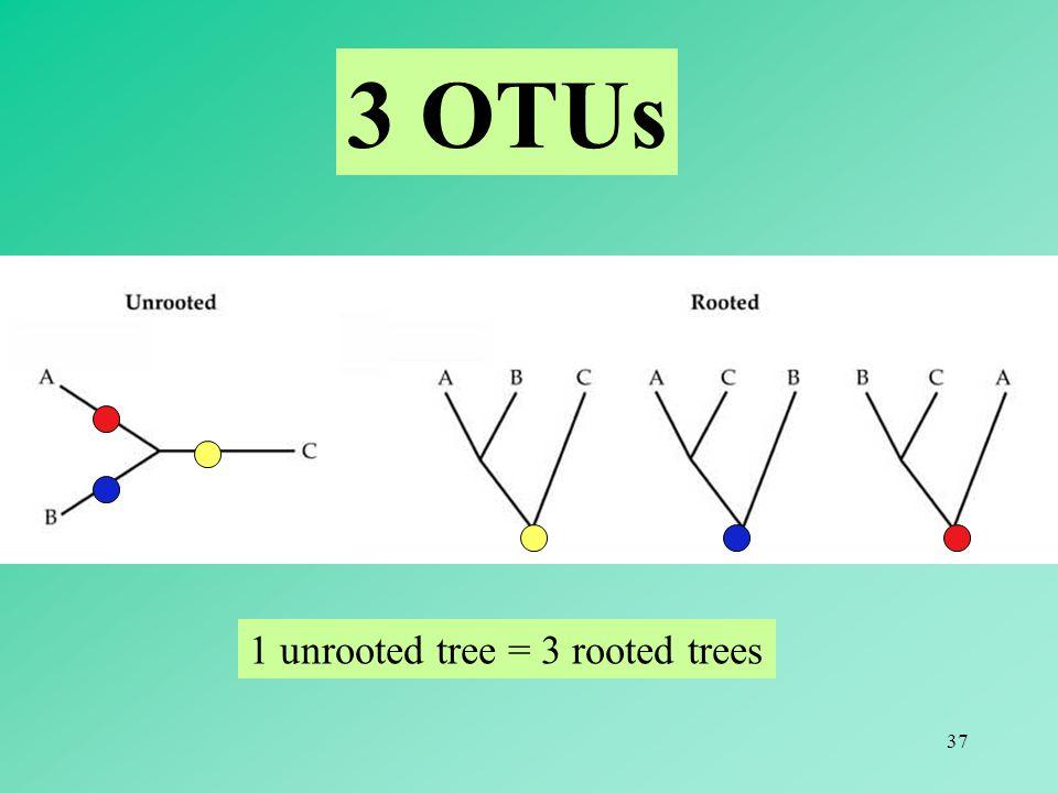 3 OTUs 1 unrooted tree = 3 rooted trees