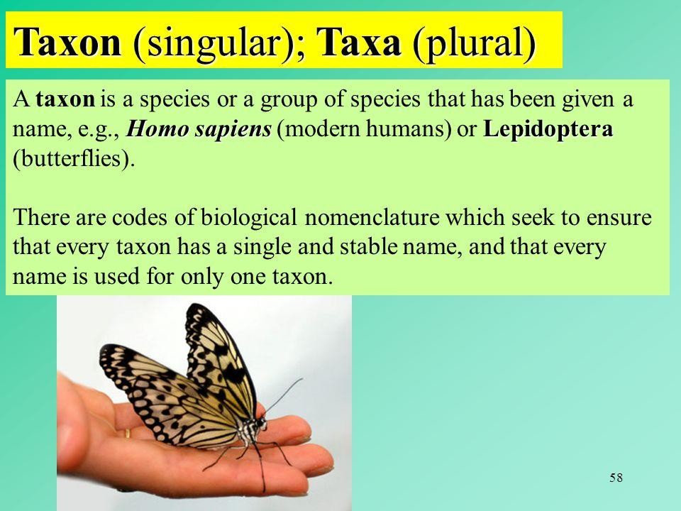Taxon (singular); Taxa (plural)
