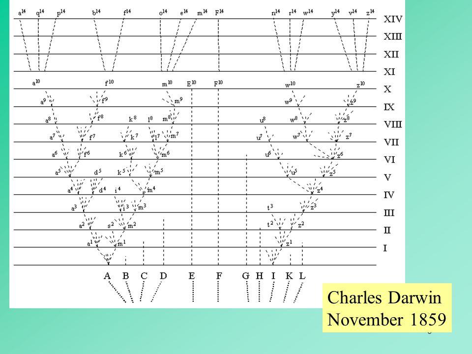 Charles Darwin November 1859