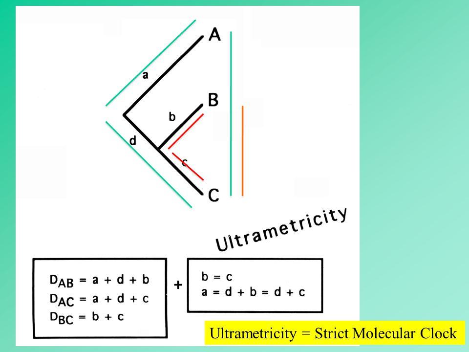 + Ultrametricity = Strict Molecular Clock