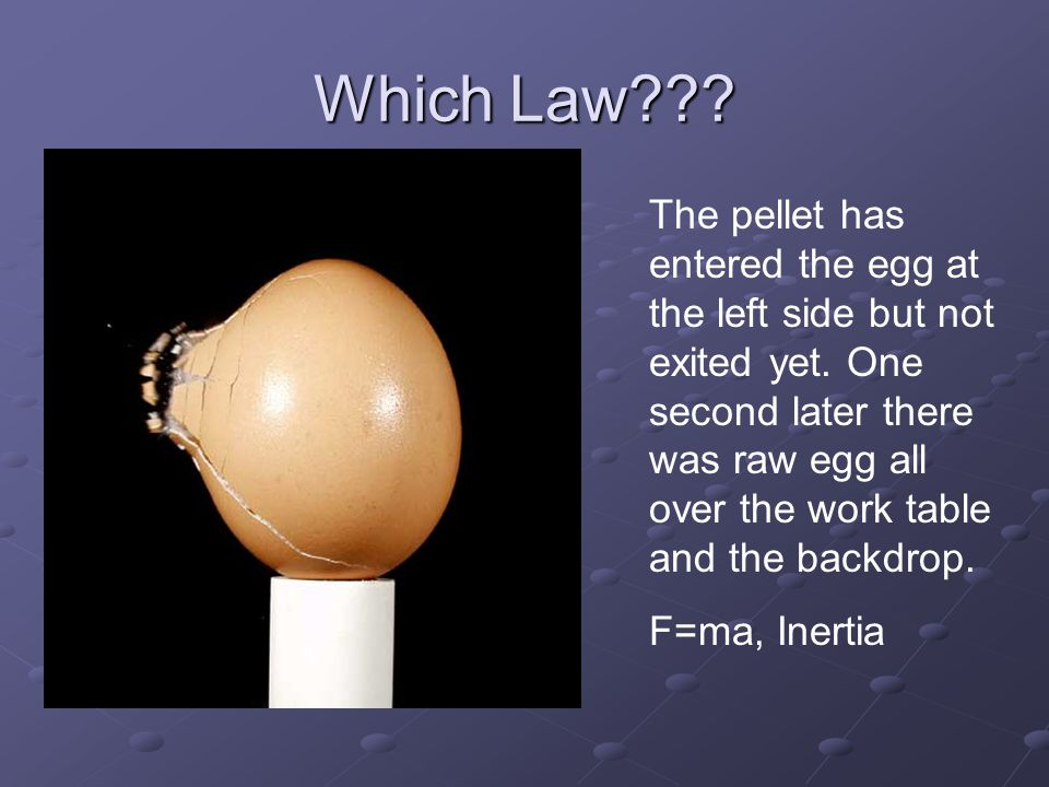 Which Law
