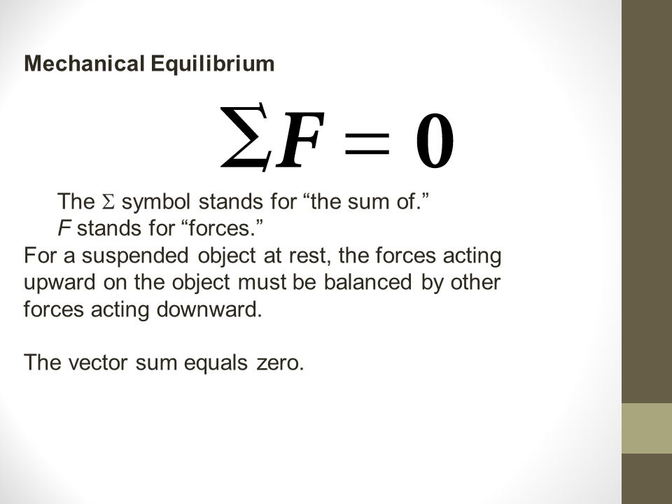 Mechanical Equilibrium