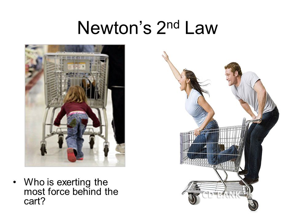 Newton's 2nd Law Who is exerting the most force behind the cart