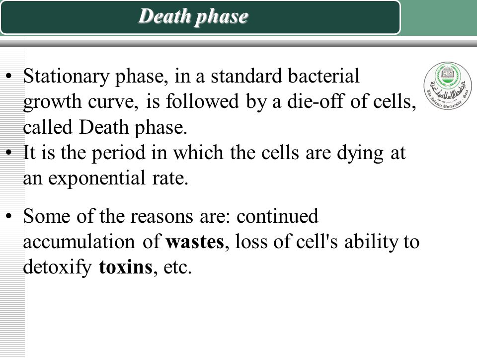 Death phase Stationary phase, in a standard bacterial growth curve, is followed by a die-off of cells, called Death phase.