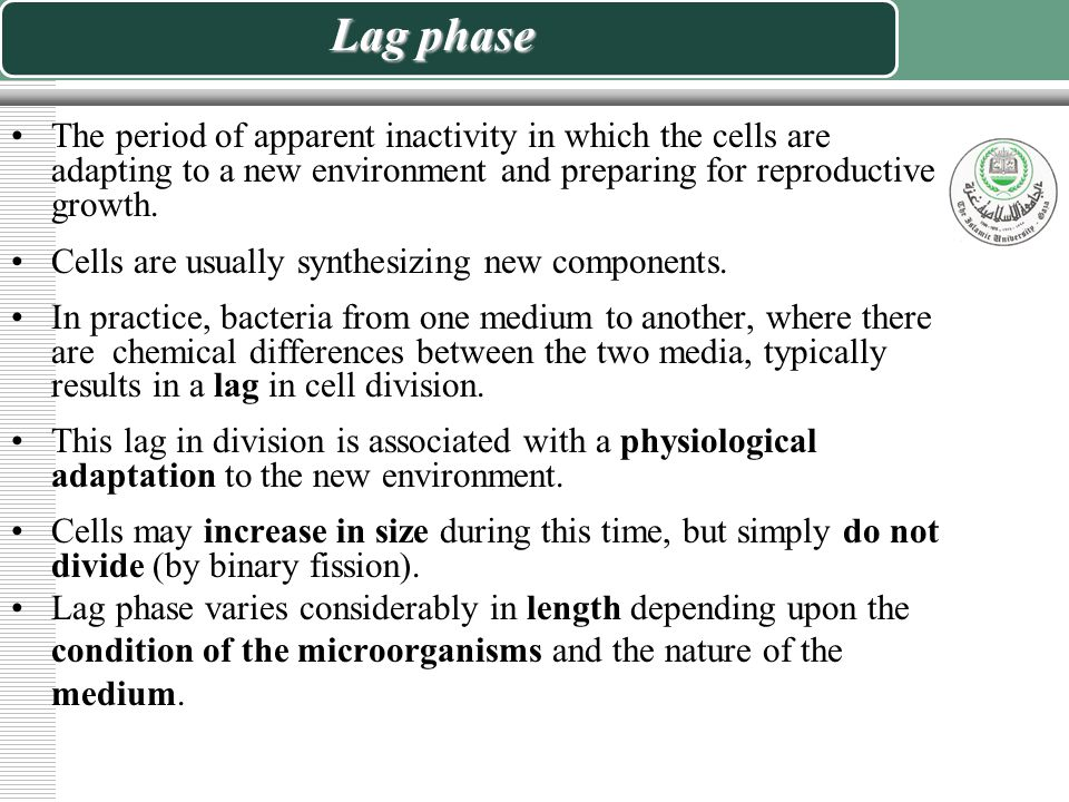Lag phase The period of apparent inactivity in which the cells are adapting to a new environment and preparing for reproductive growth.