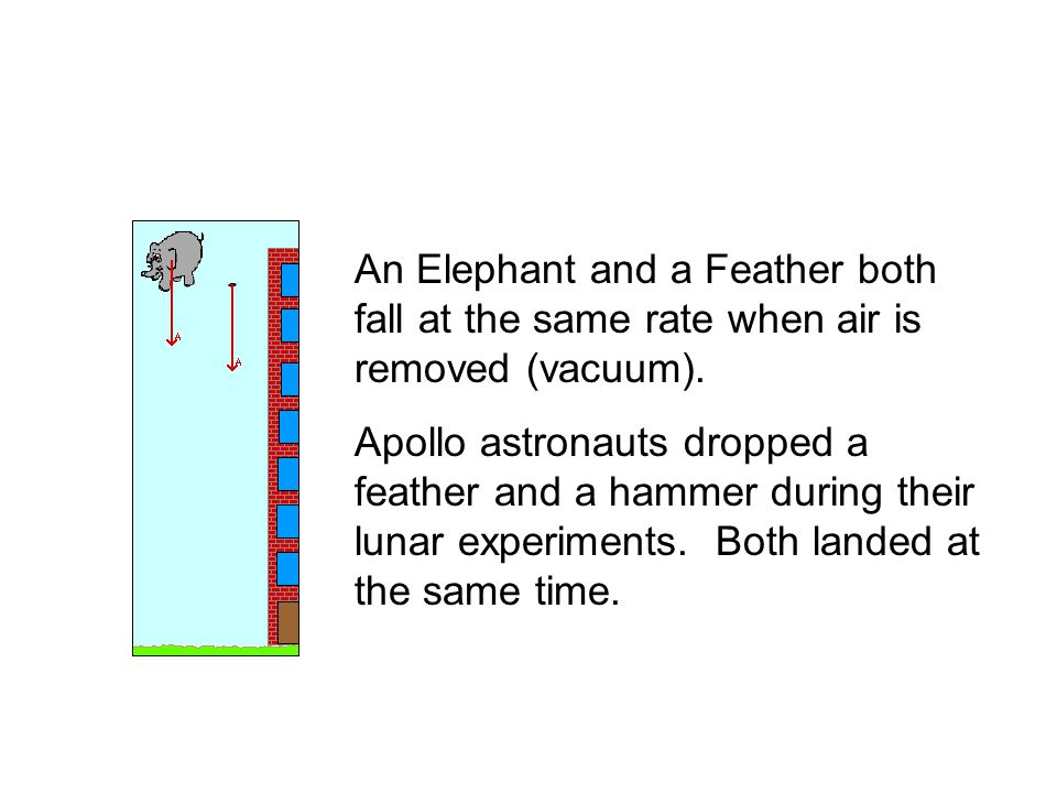 An Elephant and a Feather both fall at the same rate when air is removed (vacuum).