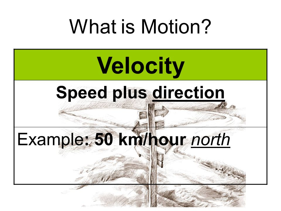 Velocity What is Motion Speed plus direction
