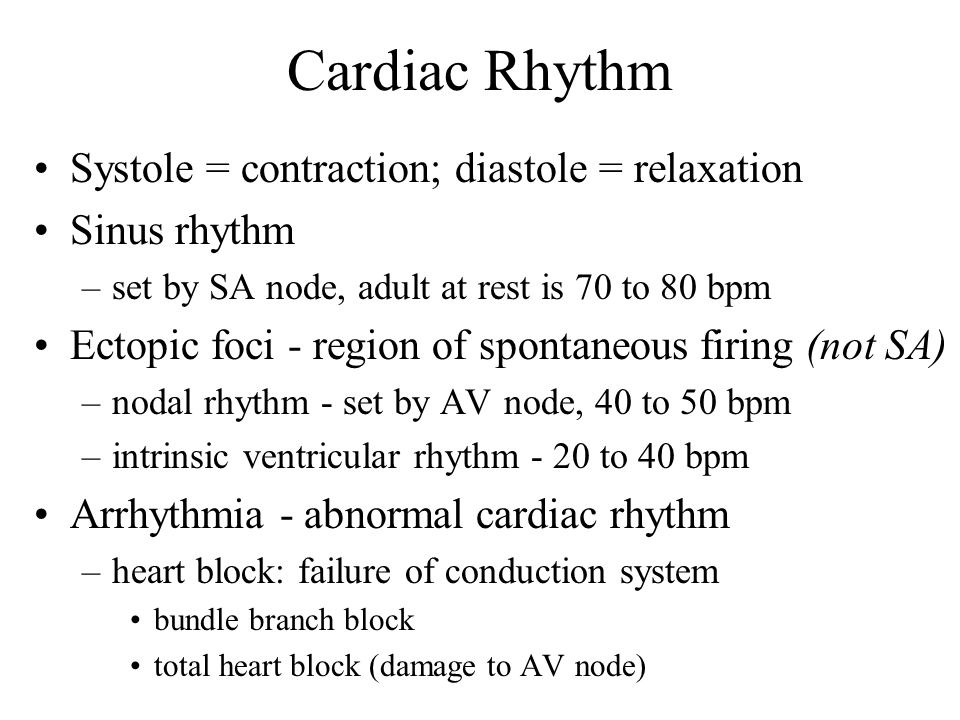 Cardiac Rhythm Systole = contraction; diastole = relaxation