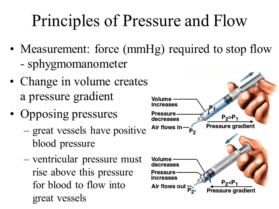 Principles of Pressure and Flow