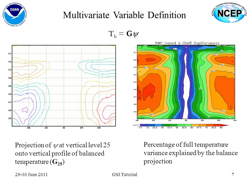 Multivariate Variable Definition