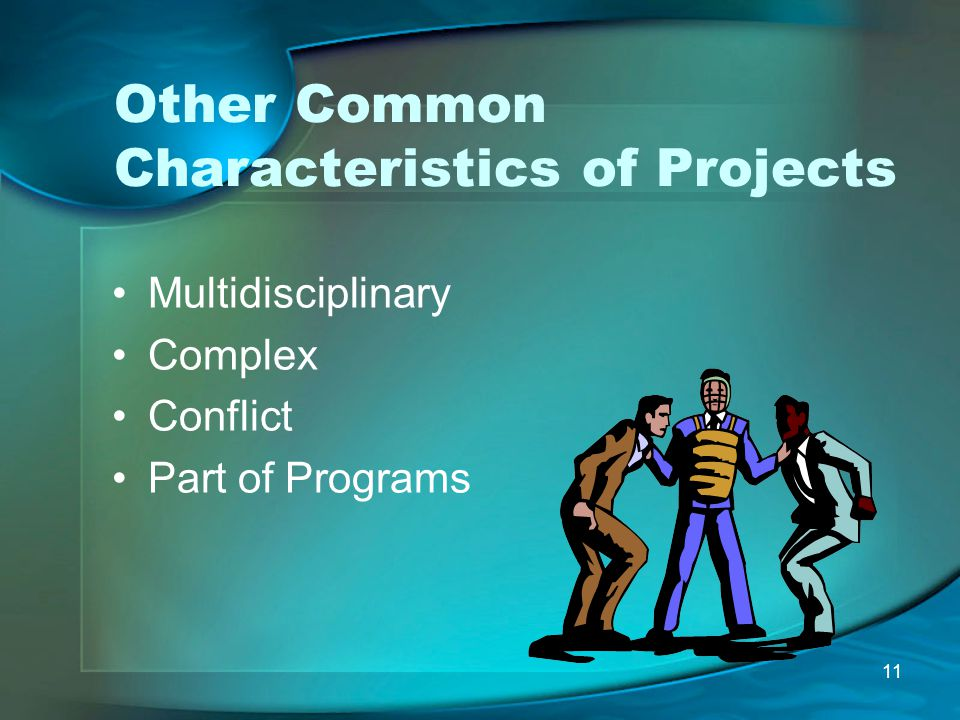 Other Common Characteristics of Projects