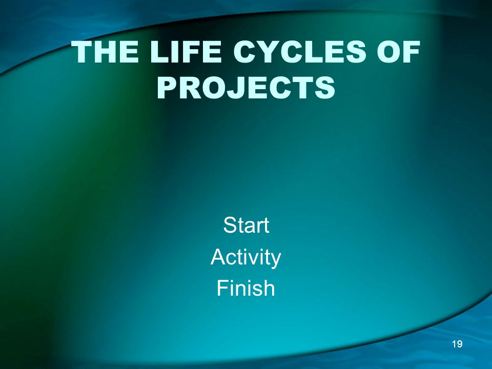 THE LIFE CYCLES OF PROJECTS