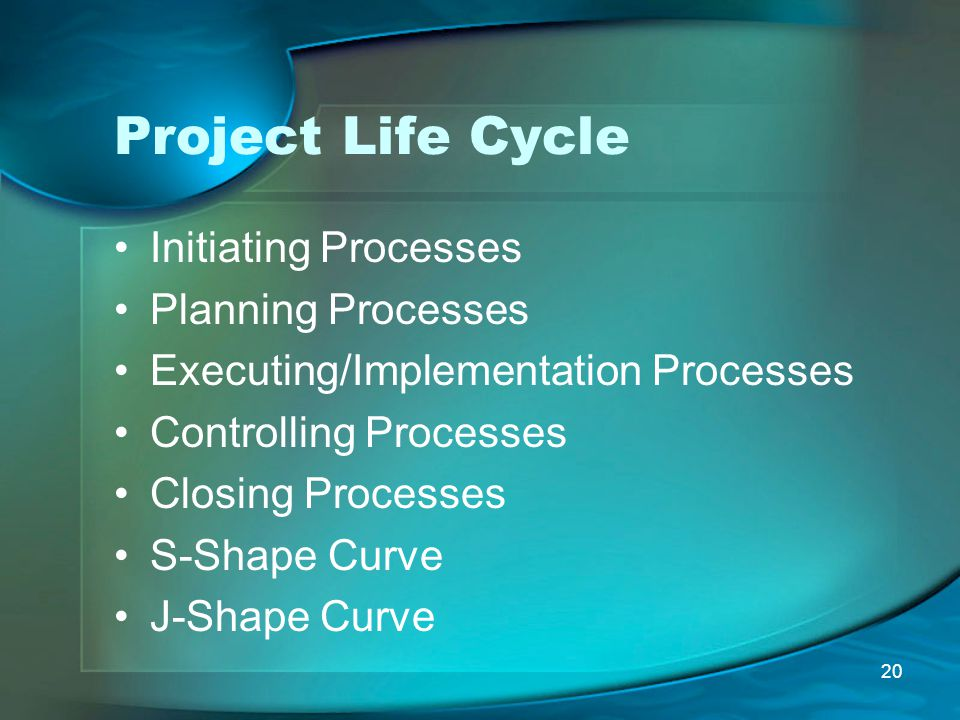 Project Life Cycle Initiating Processes Planning Processes
