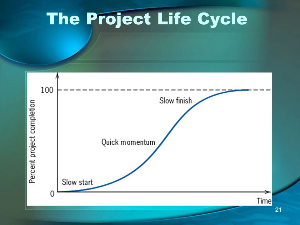 The Project Life Cycle
