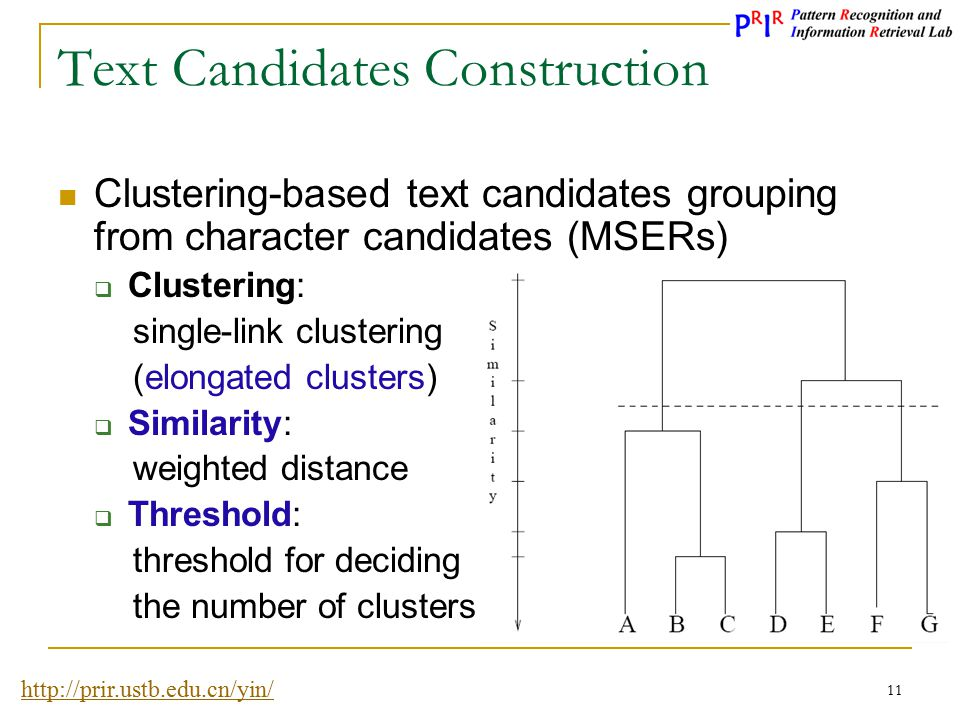 Text Candidates Construction