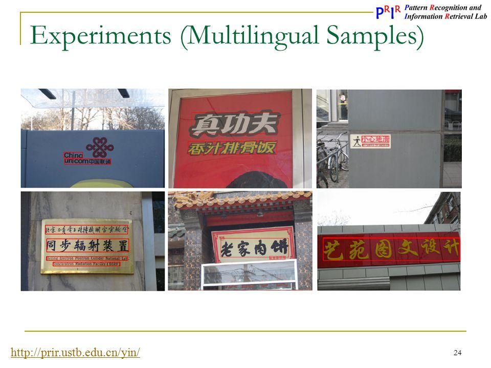 Experiments (Multilingual Samples)