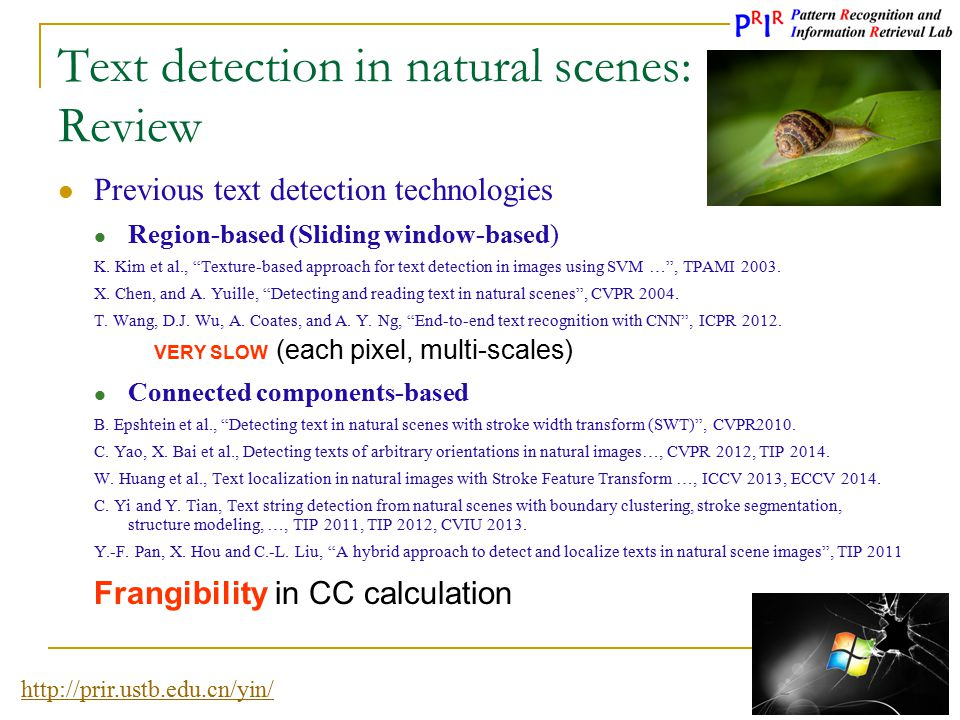 Text detection in natural scenes: Review