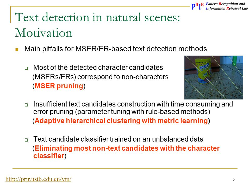 Text detection in natural scenes: Motivation