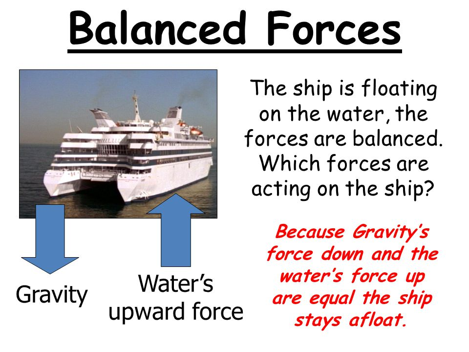 Balanced Forces Water's upward force Gravity