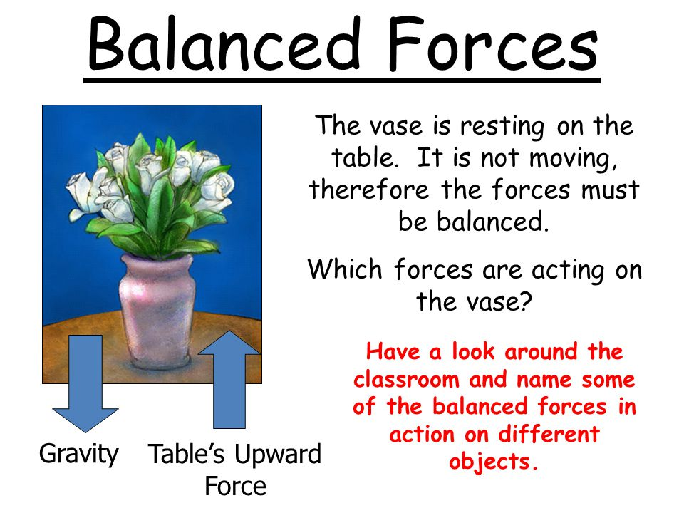 Which forces are acting on the vase