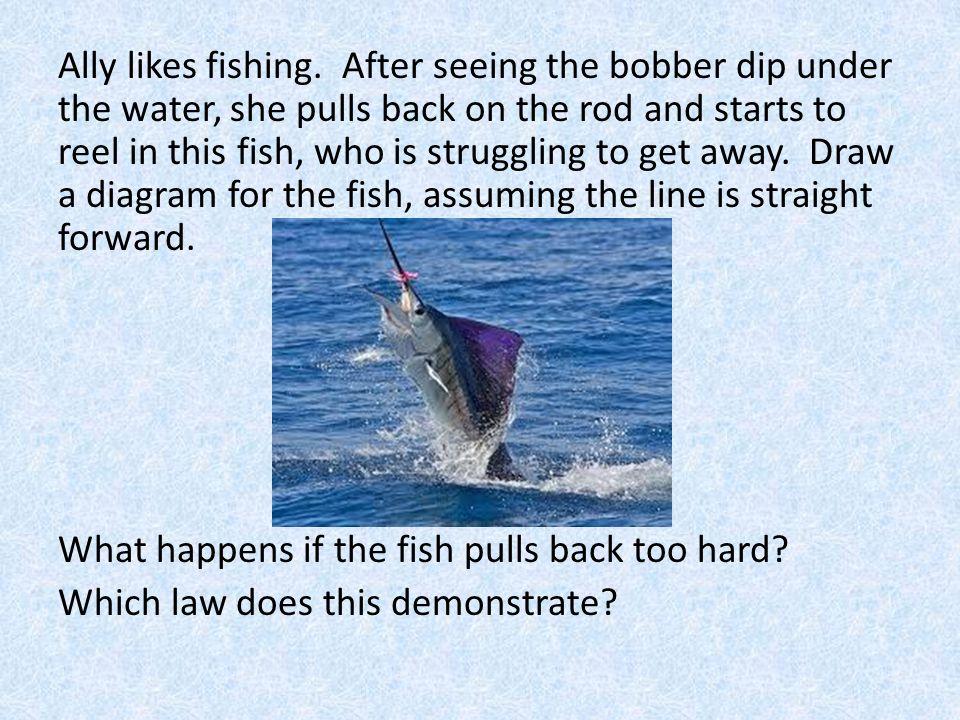 Ally likes fishing.