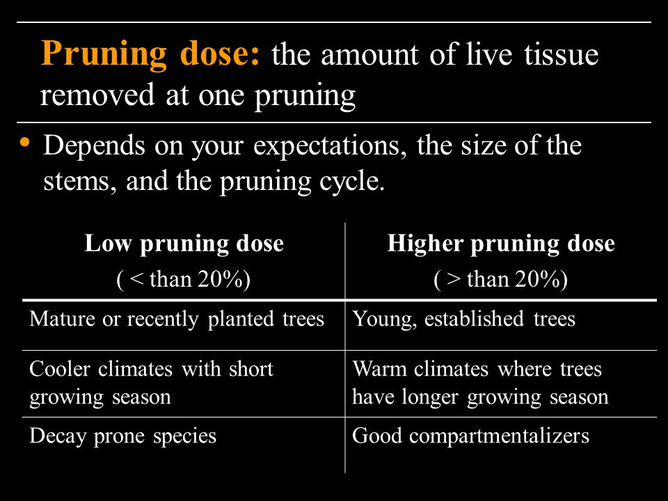 Pruning dose: the amount of live tissue removed at one pruning