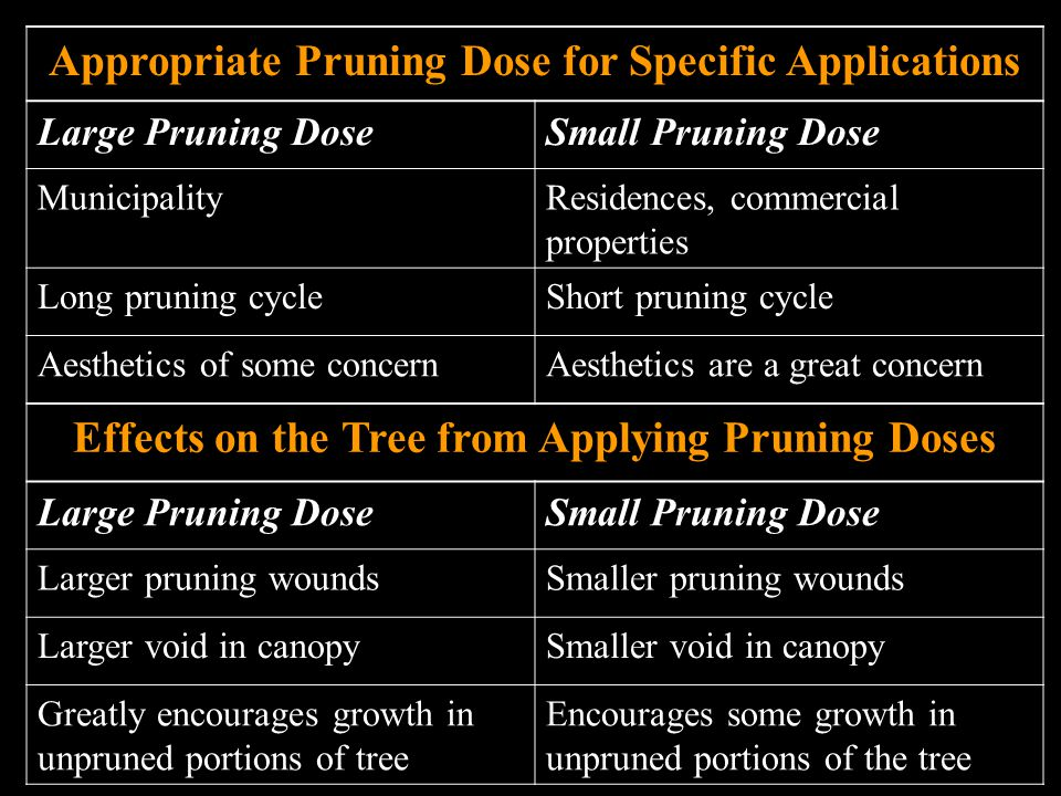 Appropriate Pruning Dose for Specific Applications