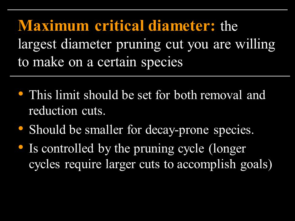 Maximum critical diameter: the largest diameter pruning cut you are willing to make on a certain species
