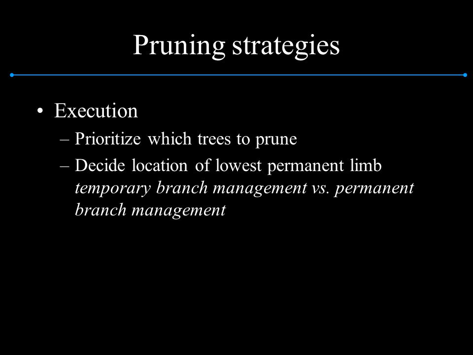 Pruning strategies Execution Prioritize which trees to prune