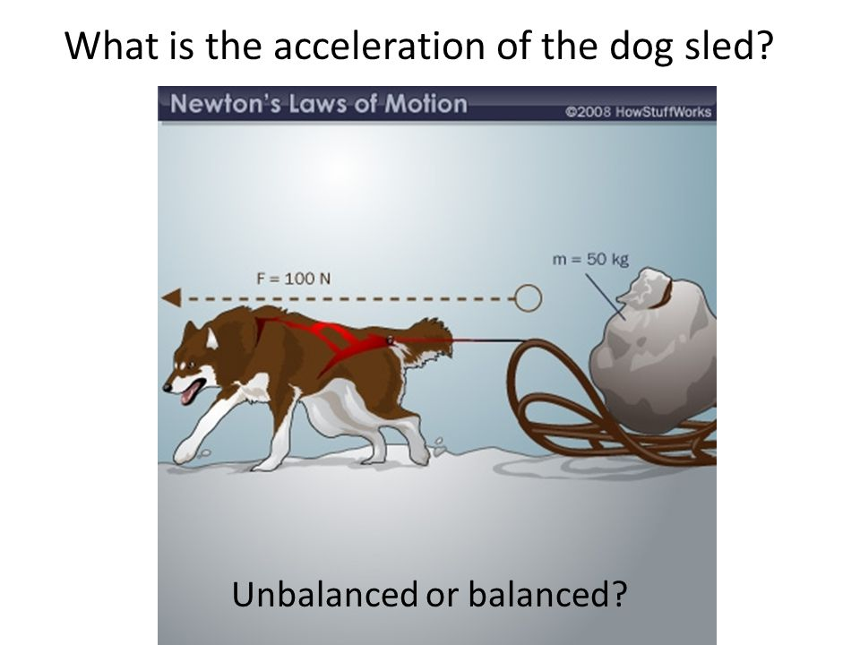 What is the acceleration of the dog sled
