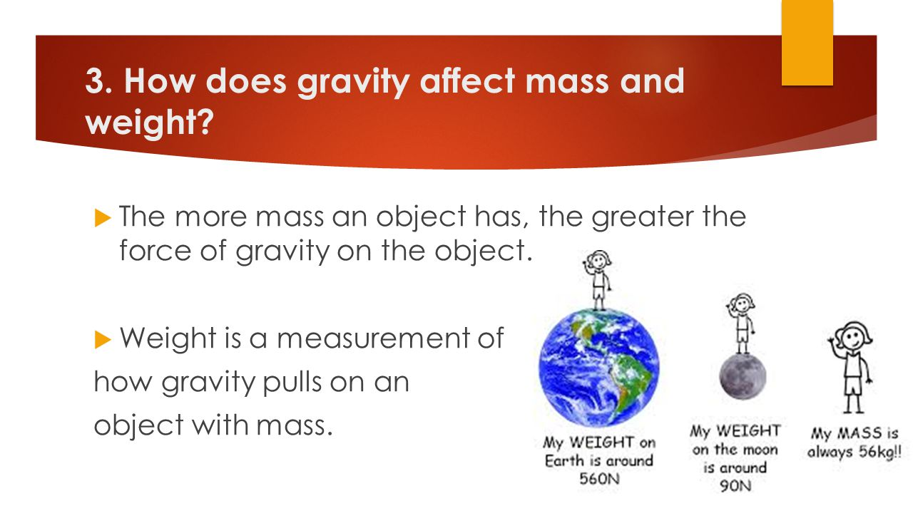 3. How does gravity affect mass and weight