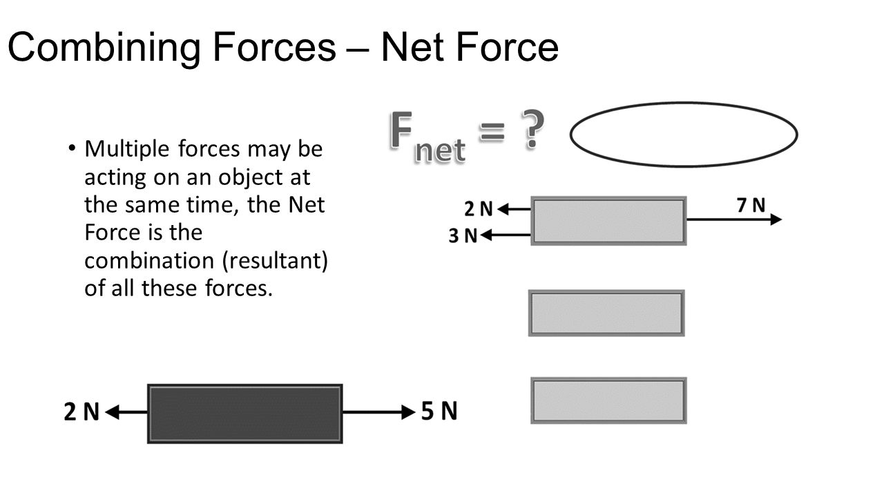 Combining Forces – Net Force