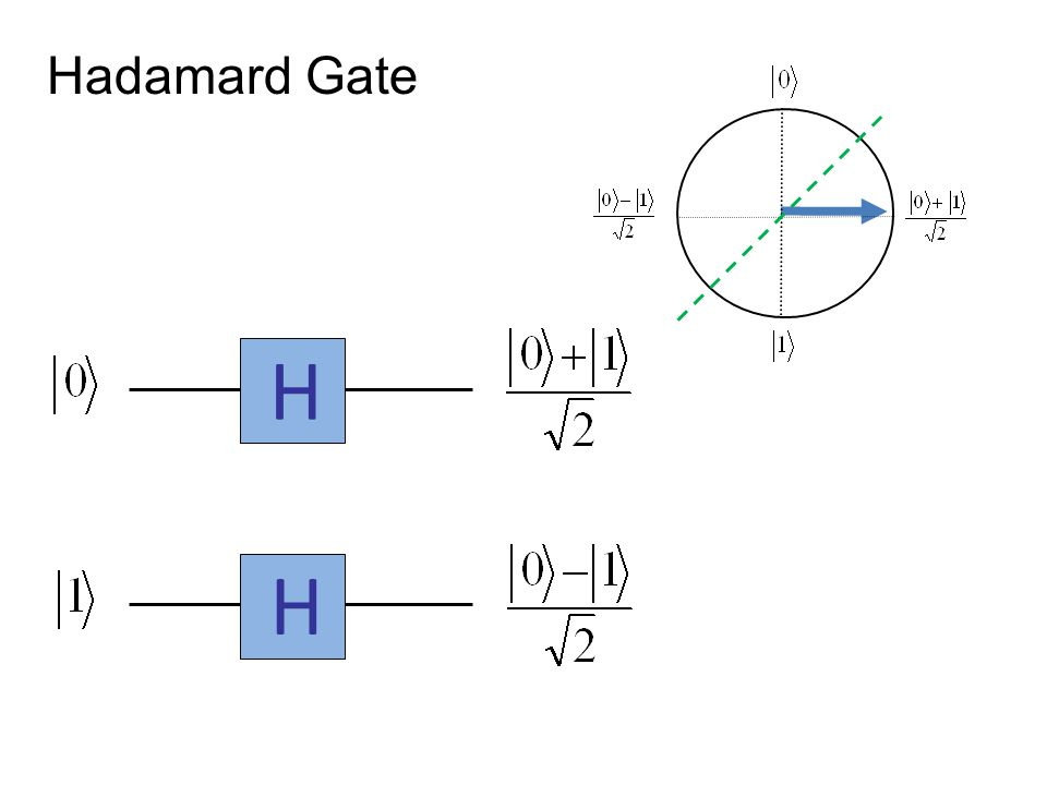 Hadamard Gate H H