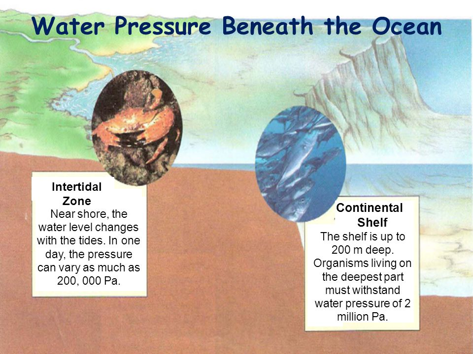 Water Pressure Beneath the Ocean