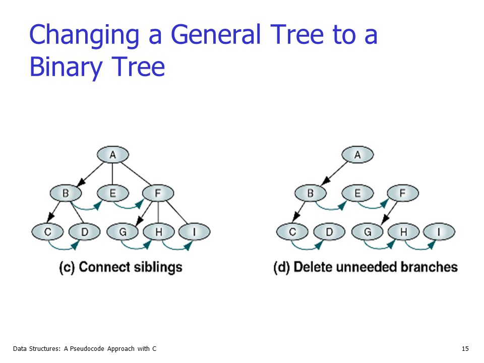 Changing a General Tree to a Binary Tree