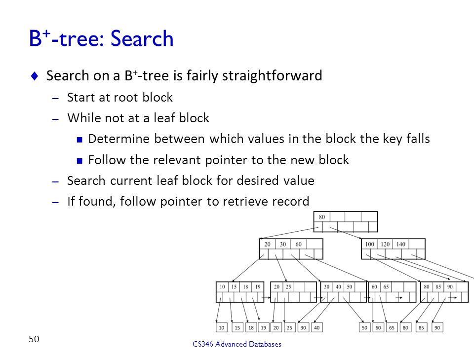 B+-tree: Search Search on a B+-tree is fairly straightforward