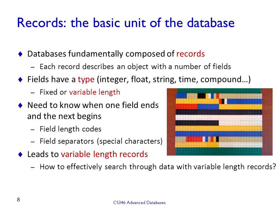 Records: the basic unit of the database