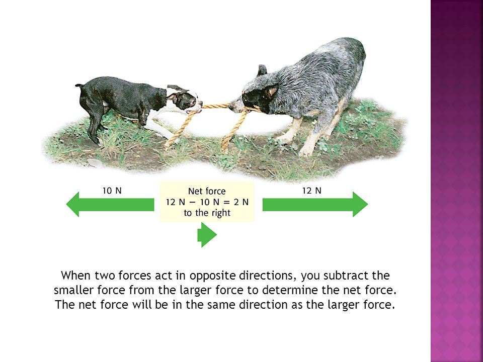 When two forces act in opposite directions, you subtract the smaller force from the larger force to determine the net force.