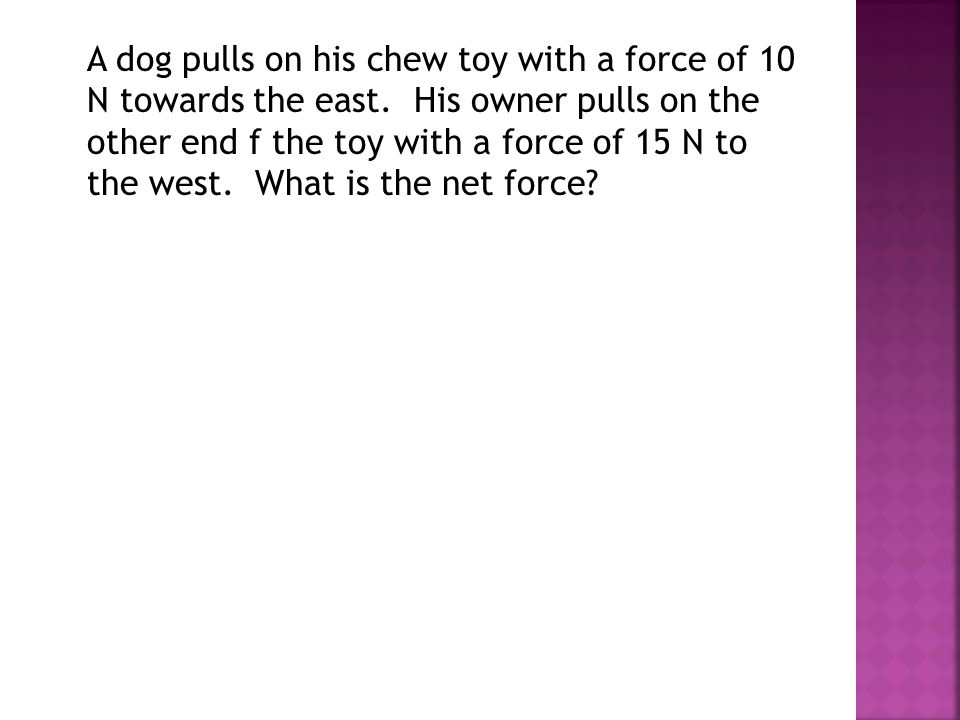 A dog pulls on his chew toy with a force of 10 N towards the east
