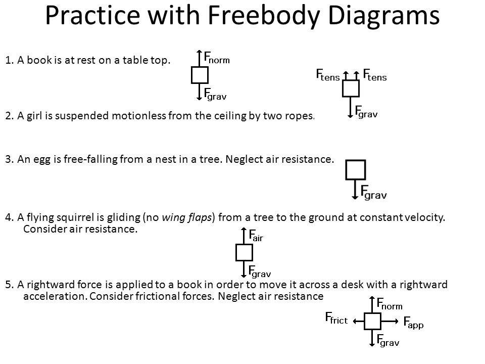 Physics free body diagram worksheet answers
