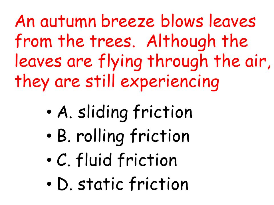 An autumn breeze blows leaves from the trees