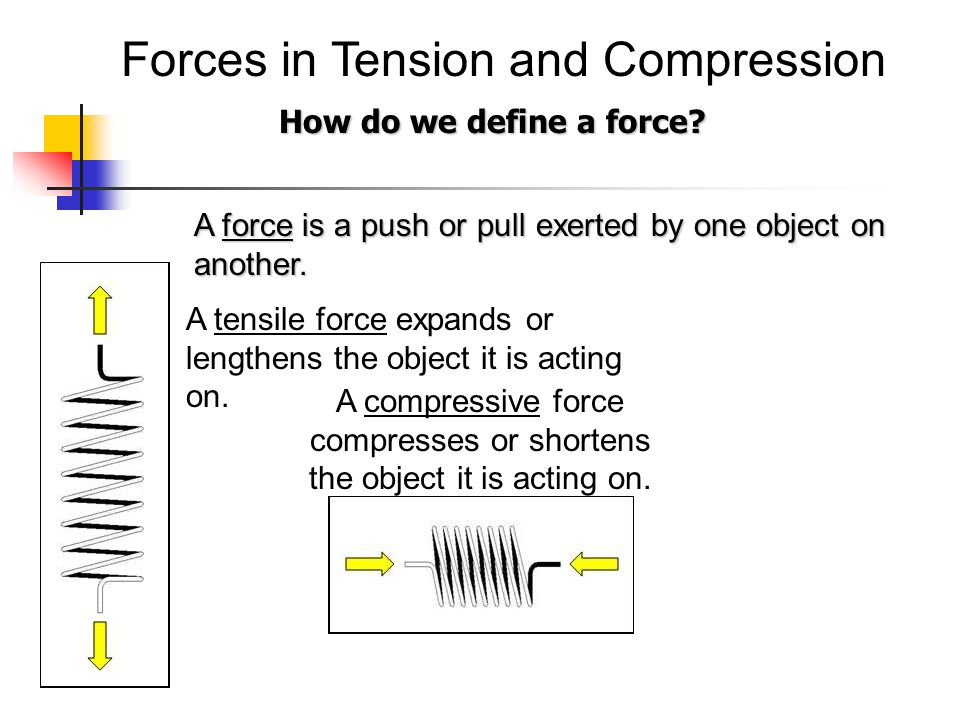 Forces in Tension and Compression