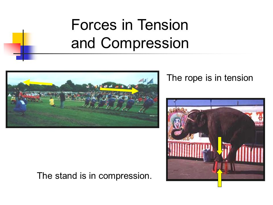 Forces in Tension and Compression The rope is in tension