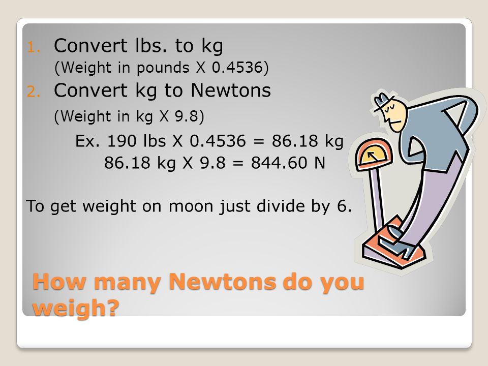 How many Newtons do you weigh