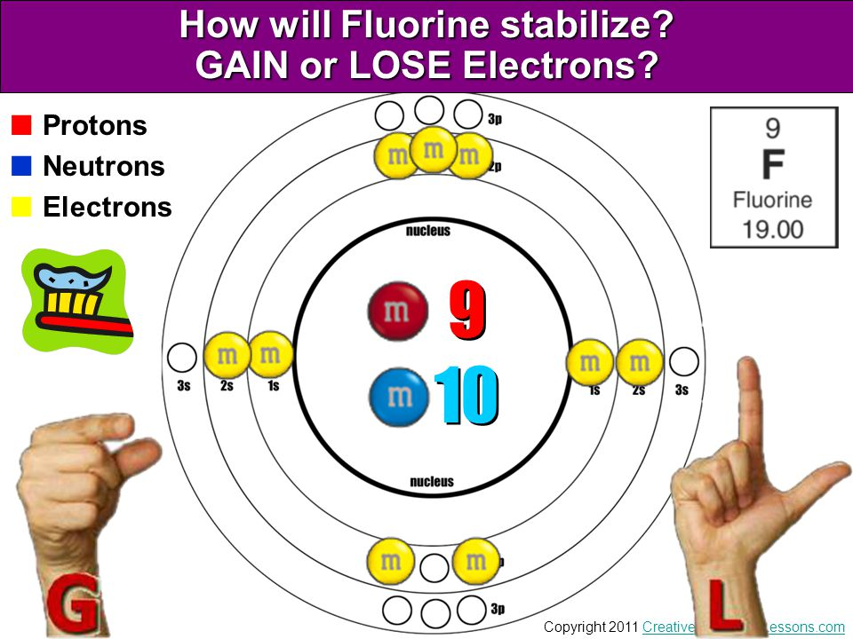 How will Fluorine stabilize GAIN or LOSE Electrons