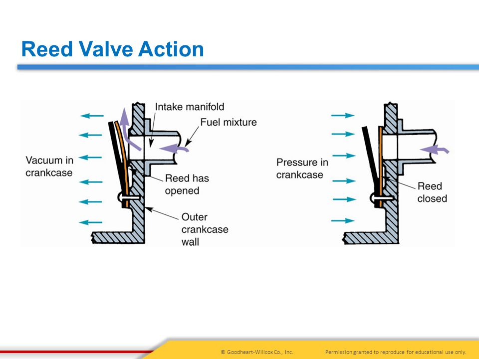 Reed Valve Action